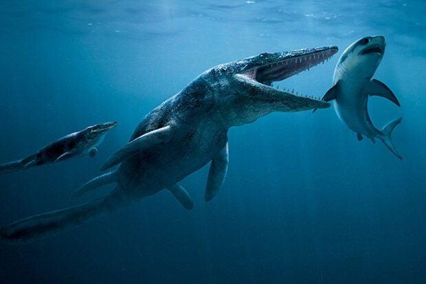 Conheça 10 monstros marinhos pré-históricos mais assustadores e mortais que existiram