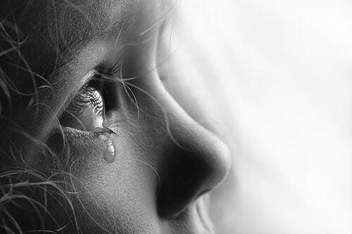 7 experimentos sociais que vão te deixar com vontade de chorar