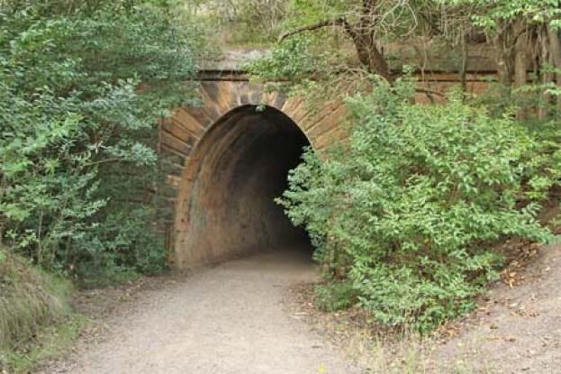 Picton_Mushroom_Tunnel