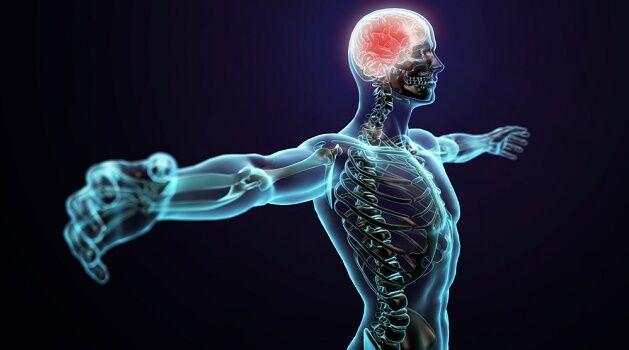 6 coisas insanamente doentias que seu corpo pode fazer