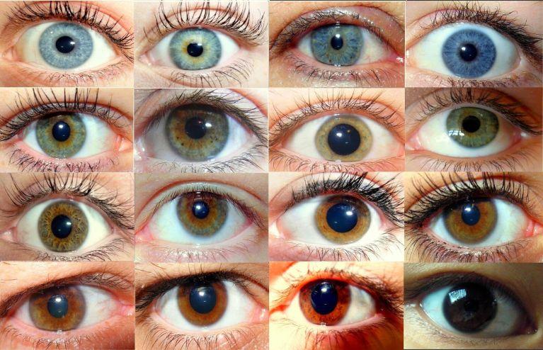 Descubra a cor dos olhos que seus filhos vão ter