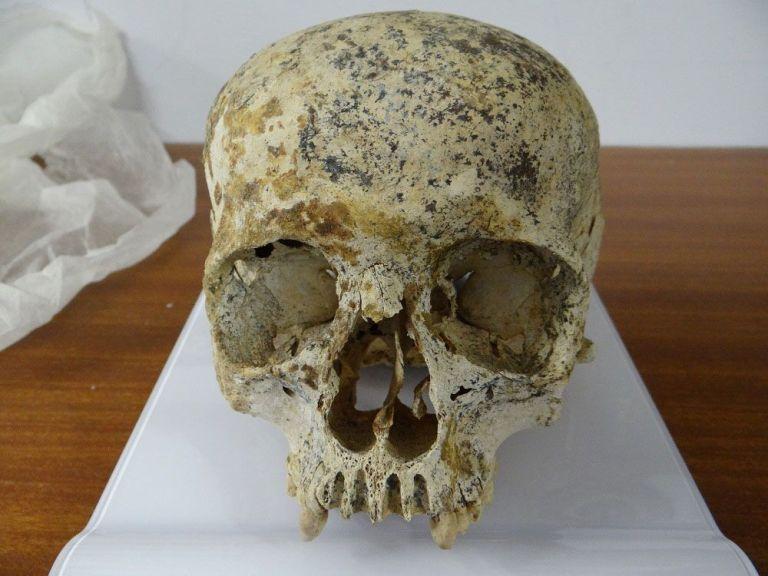 Conheça Ava, a mulher que viveu há 3.700 anos e teve o rosto reconstruído digitalmente