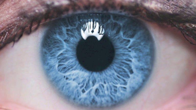 Todas as pessoas de olhos azuis estão interligadas por algo maior do que a semelhança física