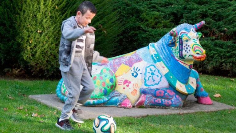 Esse menino de 7 anos possui uma rara doença de pele e essa pode ser a solução para pessoas com o mesmo problema