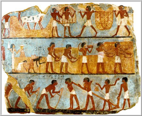 Egito Agricultura 600x491, Fatos Desconhecidos