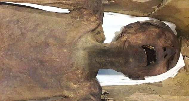Cientistas enfim conseguem solucionar o mistério da 'Múmia que grita'