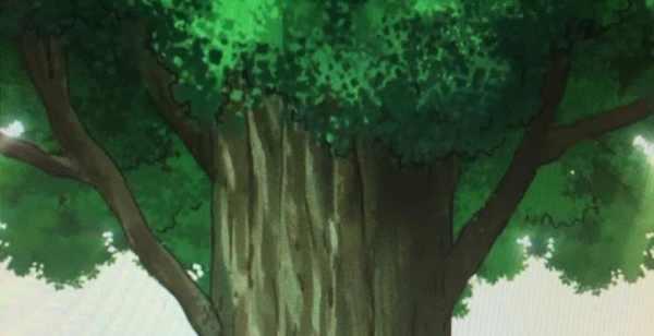Kai Tree In Dragon Ball 600x308, Fatos Desconhecidos