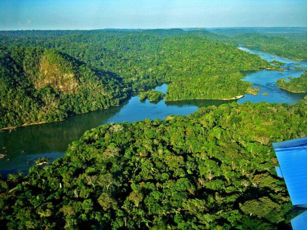 Amazônia. Foto Site Ambiente E Energia 600x450, Fatos Desconhecidos