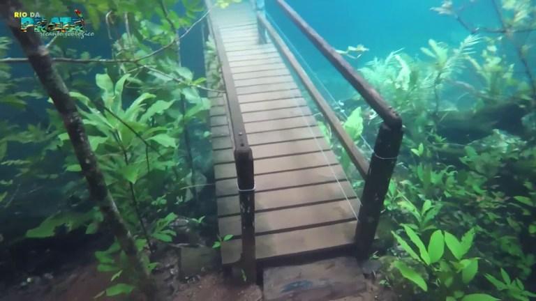 [VÍDEO] Esse parque brasileiro acabou virando um paraíso subaquático depois de uma inundação