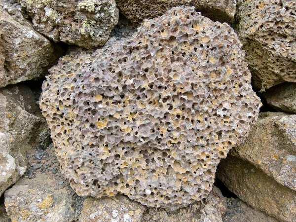 13582UNILAD Imageoptim Trypophobia Pumice Stone 600x450, Fatos Desconhecidos