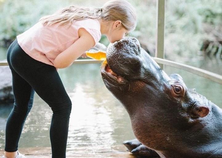 7 histórias emocionantes de amizade entre humanos e animais selvagens