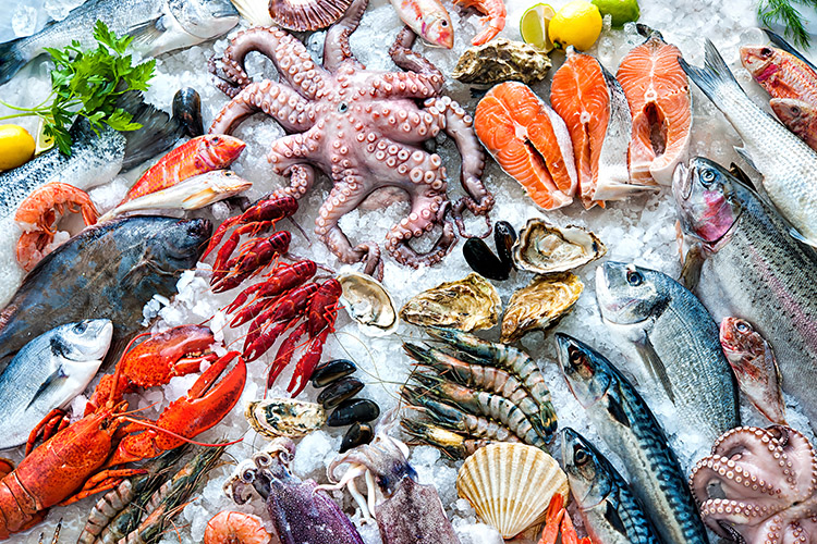 Frutos Do Mar 1, Fatos Desconhecidos