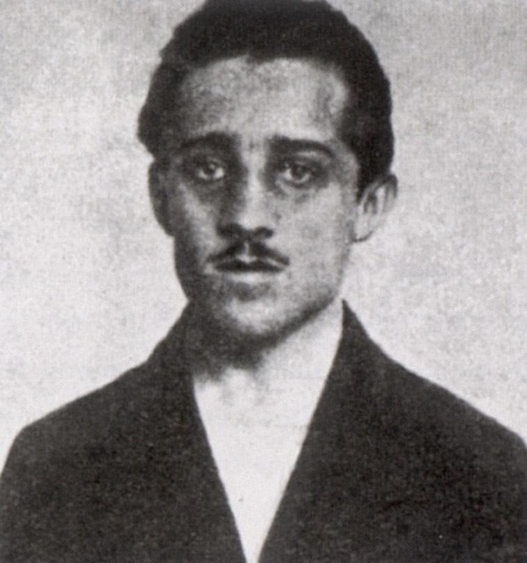 Gavrilo Princip Med Hr, Fatos Desconhecidos