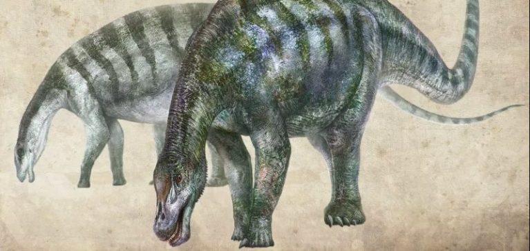 Conheça o 'Incrível Dragão', nova espécie de dinossauro que foi descoberto na China