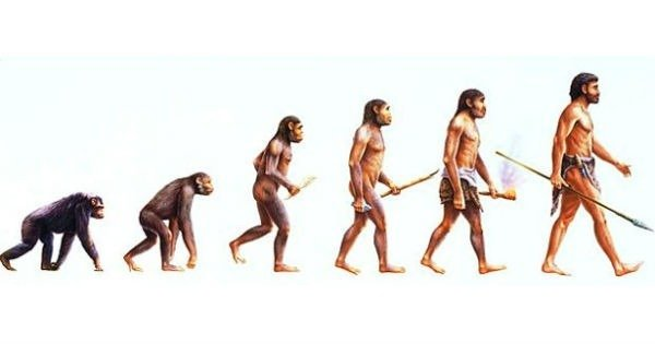 7 sinais de que a evolução não é tão perfeita quanto pensamos