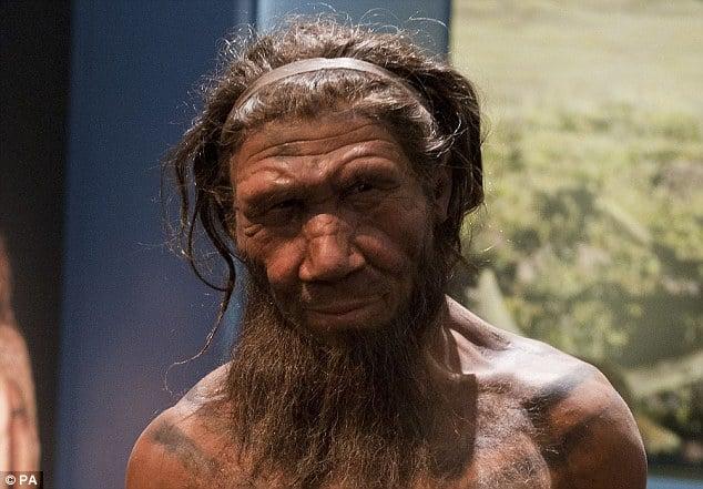 Aparentemente humanos se relacionaram com outros hominídeos e não só com neandertais