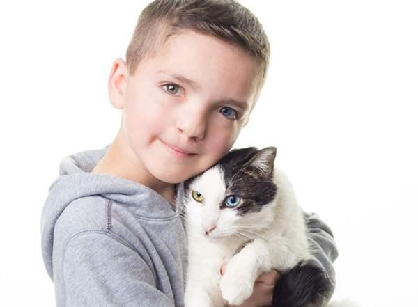 Different Eyes Colors Cat Moon Boy Madden Friendship 3 5abb38f49d54d  700 600x441, Fatos Desconhecidos