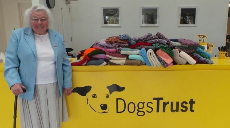 Essa senhora de 89 anos tricotou sozinha 450 cobertores para cachorros desabrigados