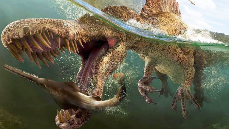 7 características curiosas e únicas de algumas criaturas antigas