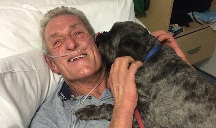 Homem em coma diz ter sido acordado pelos latidos de seu cão