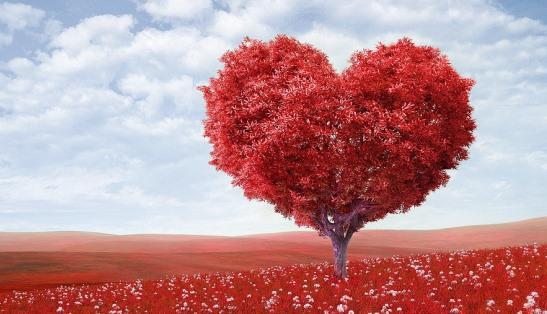 """10 formas de dizer """"eu te amo"""" sem uma única palavra"""