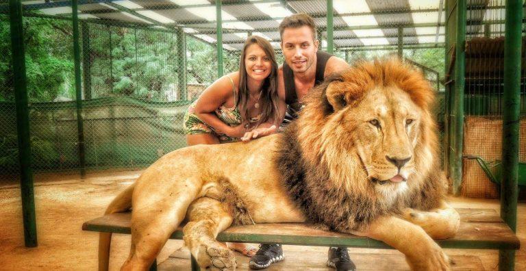 A triste realidade do turismo com animais selvagens