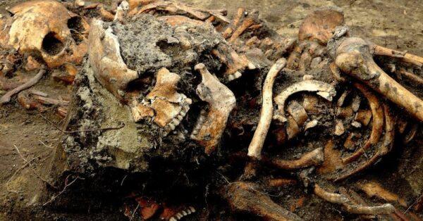 Cadáveres Capa 600x314, Fatos Desconhecidos