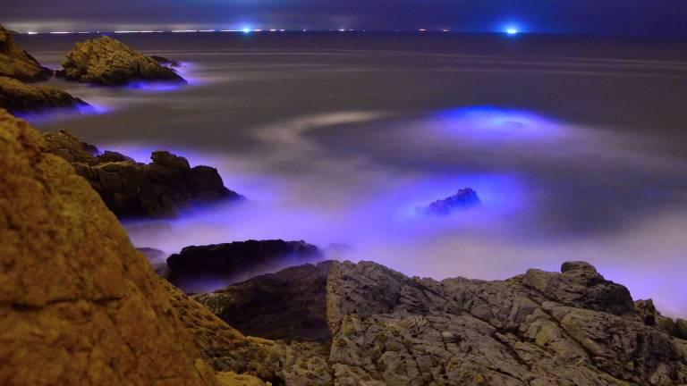 Lágrimas azuis nos mares da China são incrivelmente tóxicas, entenda