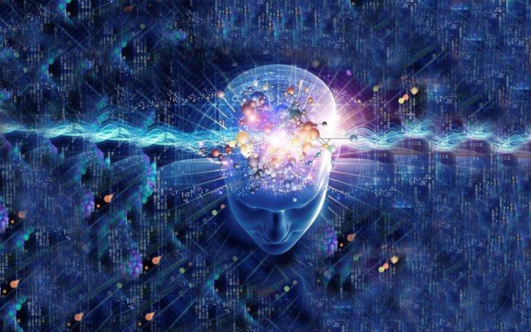 """O ser humano está cada vez mais """"burro"""", segundo estudo"""