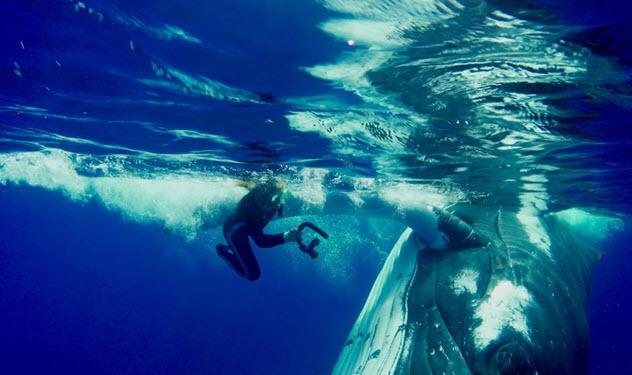 7 coisas mais surpreendentes encontradas por mergulhadores