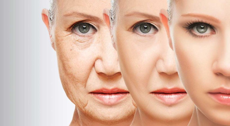 """Cientista diz que envelhecimento pode ser """"curado"""", entenda"""