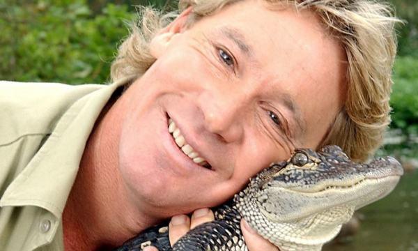 Steve Irwin 600x360, Fatos Desconhecidos