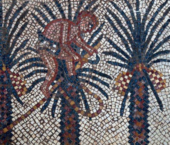 Elim Mosaic 587x500, Fatos Desconhecidos