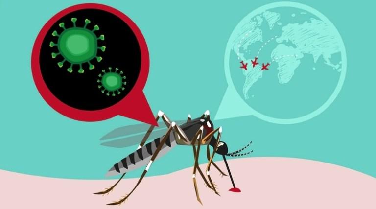 Esse é o ano em que a dengue será uma epidemia global