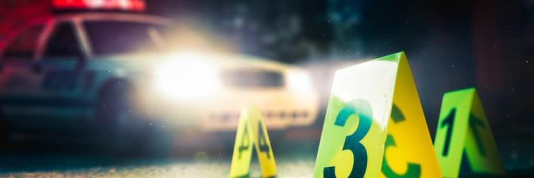 7 crimes mais loucos do ano (até agora)