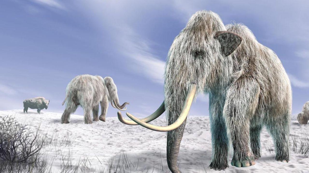 E se a Terra tivesse uma nova Era do Gelo?