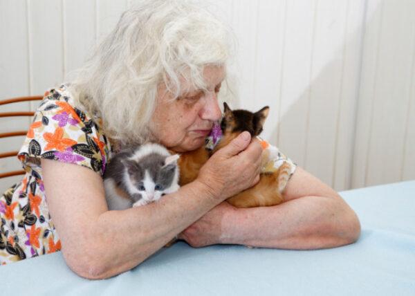 Grandma With Kittens E1425041062846 600x428, Fatos Desconhecidos