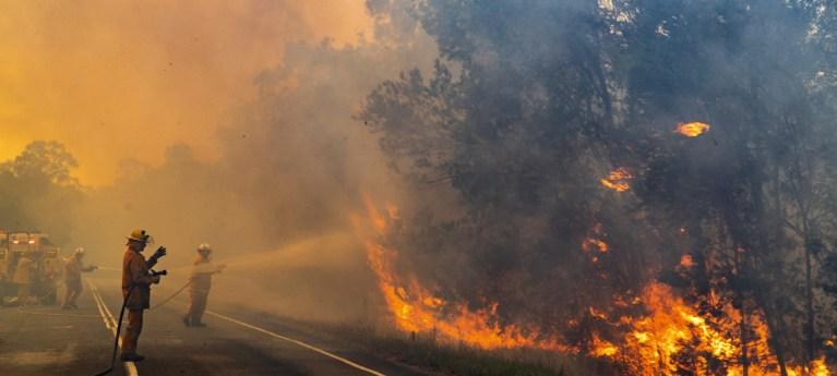 7 coisas mais incríveis que aconteceram durante o incêndio da Austrália