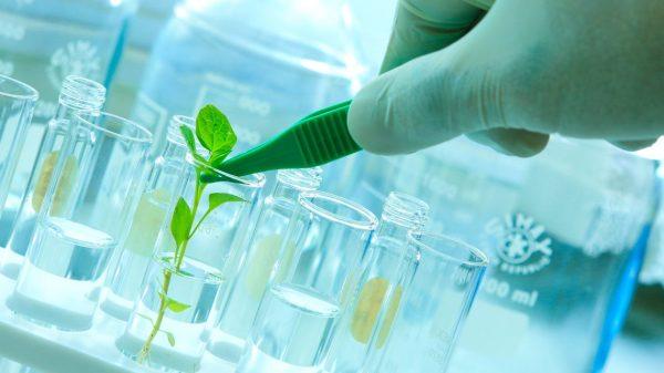 Bio Tech 1 1140x641 600x337, Fatos Desconhecidos