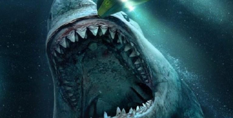 Foram encontrados fósseis de tubarão de 330 milhões de anos