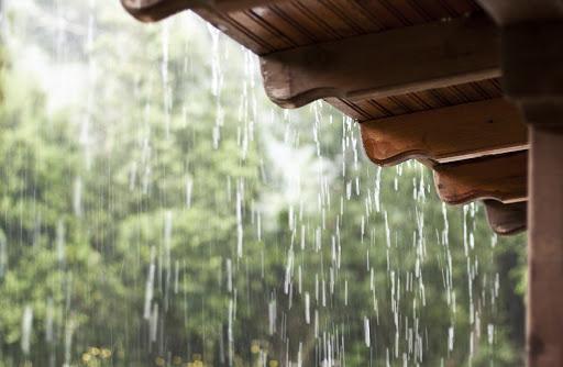 Você ama o cheiro da chuva? Existe um motivo oculto por trás dessa atração