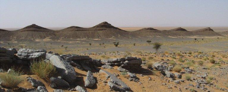 O lugar mais perigoso na história da Terra pode ter sido encontrado por paleontólogos