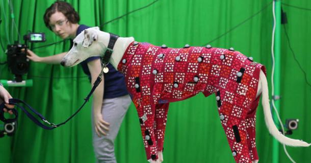 Essa tecnologia pode digitalizar o seu cachorro em videogames