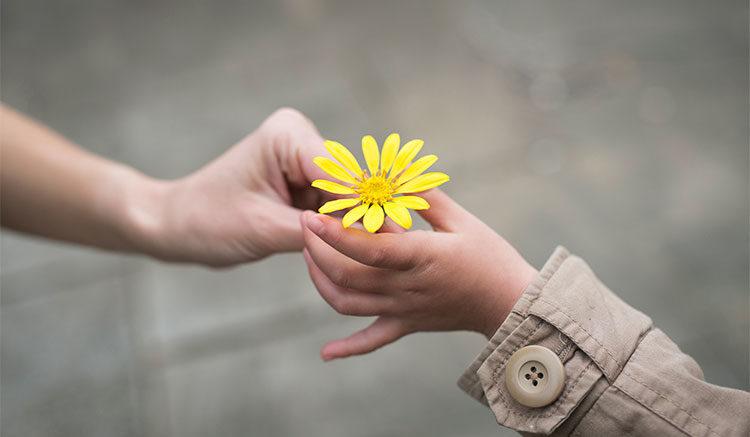 Ser bondoso não é uma coisa aleatória, compensa para os seres humanos