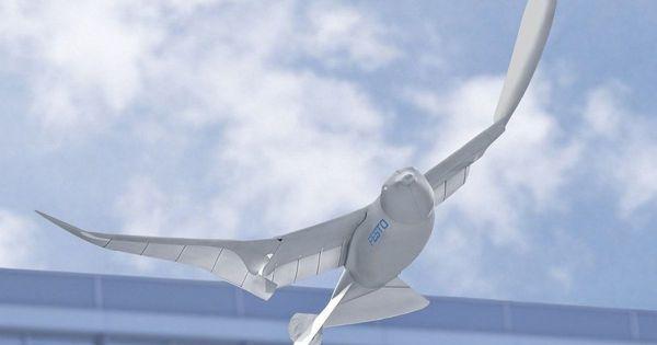 China Launching Bird Drones To Spy Over Citizens 1 600x315, Fatos Desconhecidos