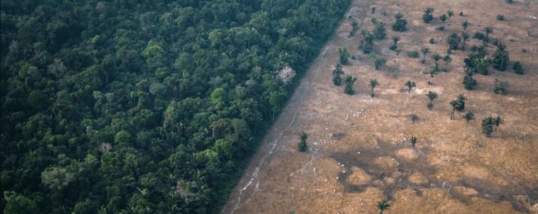 Um em cada 5 países pode estar caminhando para o colapso ambiental
