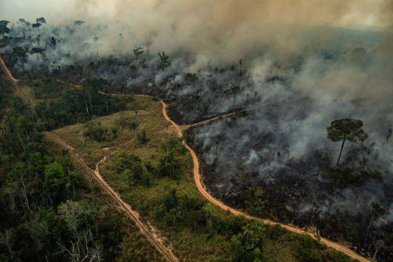 """""""A Amazônia está chegando em um ponto de devastação irreversível"""", dizem especialistas"""