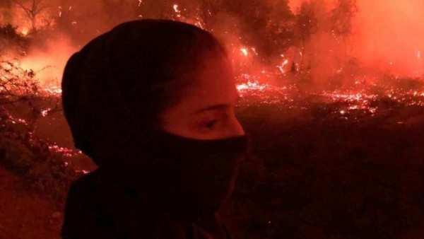 Jovem Se Mudou Para O Pantanal E Lidera Resgate De Animais Vitimas Dos Incendios 2 600x338, Fatos Desconhecidos