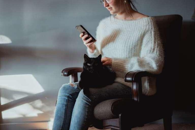 Esse aplicativo ajuda a prolongar a vida do seu gato