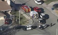 Americano decapita dois filhos e força os outros dois a viverem com os cadáveres